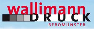 Medienarbeit unterstützt durch Wallimann Druck + Verlag AG